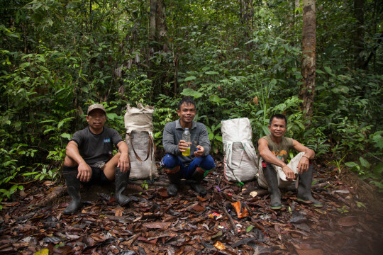 Bukit Batikap Expedition