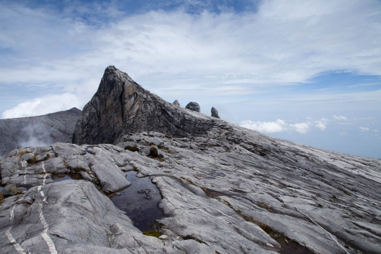 Sir Hugh Low Trail – Mt Kinabalu