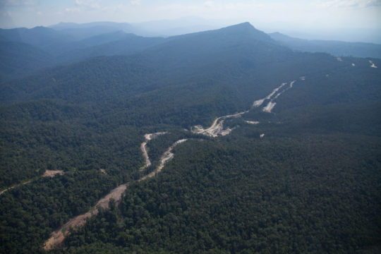 Broken Roads of Borneo